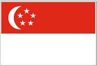 [domain] Singapore Flag